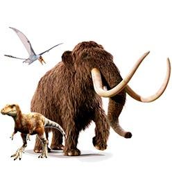 Prehistoric animals toys