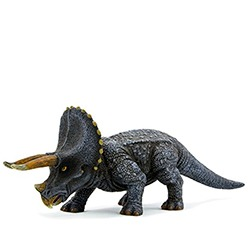 Triceratops toys
